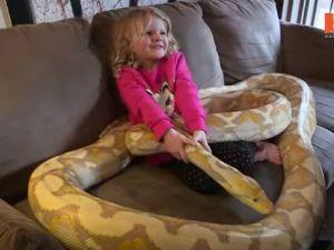 Oyuncakları gerçek yılanlar ve timsahlar!