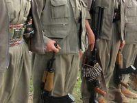 Emniyet: PKK halk ayaklanması başlatacak