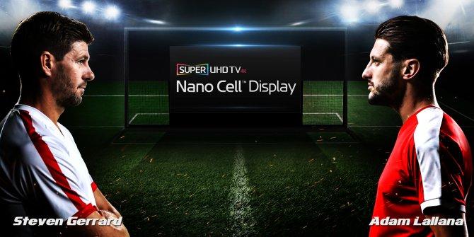 nano-cell-4.jpg